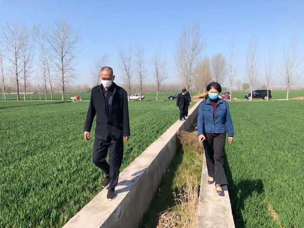 杜集区人大常委会 调研农田水利基础设施建设情况