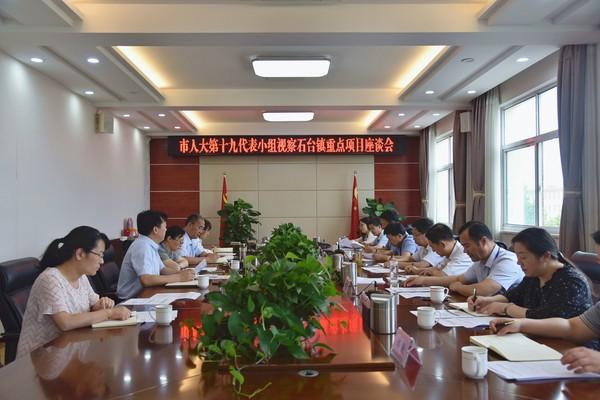 市人大常委会第十九代表小组视察杜集区石台镇重点项目建设情况